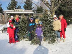 Fresh Cut Christmas Tree Prices